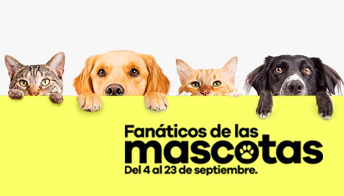 Evento mascotas