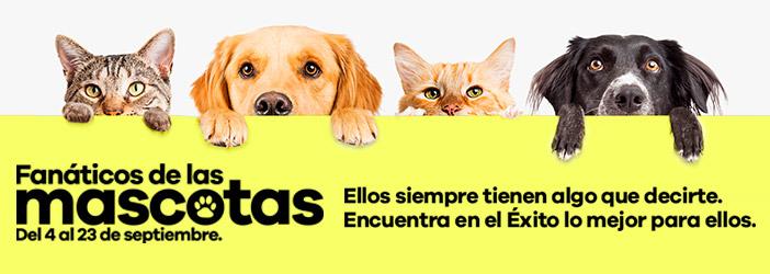 Fanáticos de las mascotas